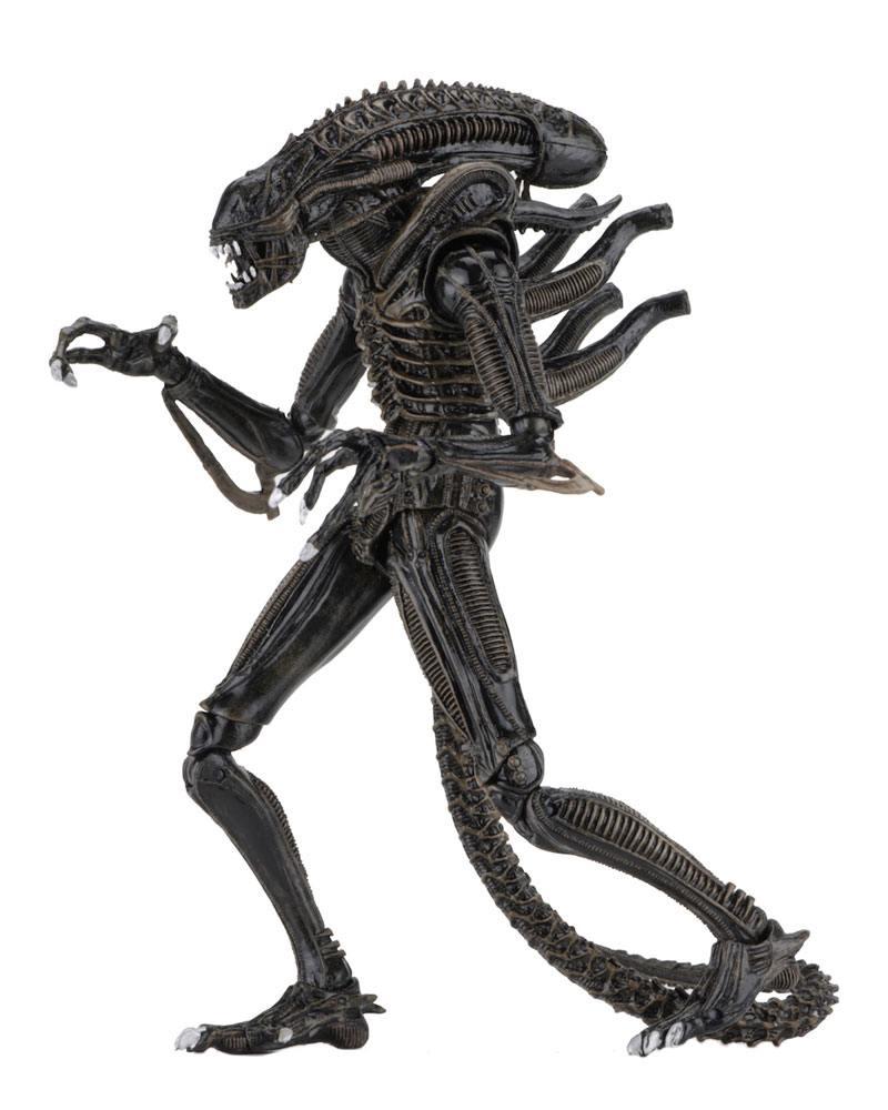 Aliens Action Figure Ultimate Warrior Brown 23 cm